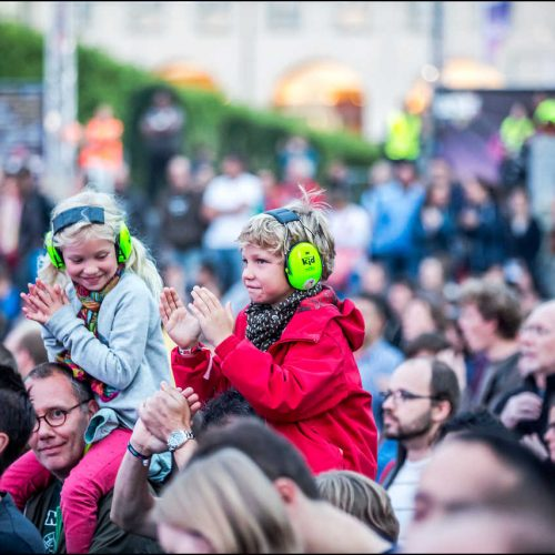 brussels-summer-festival (7)