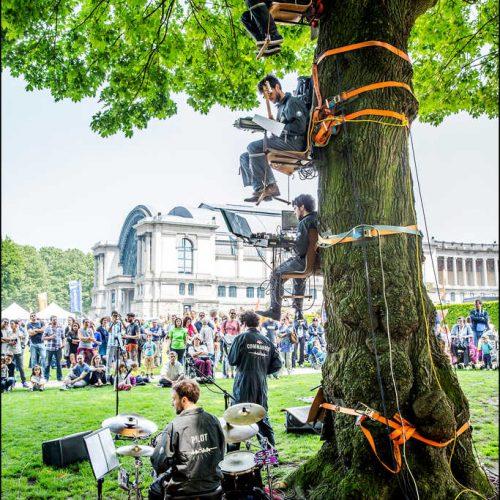 festival-environnement (4)